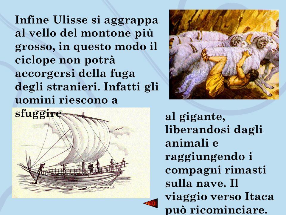 Infine Ulisse si aggrappa al vello del montone più grosso, in questo modo il ciclope non potrà accorgersi della fuga degli stranieri. Infatti gli uomini riescono a sfuggire