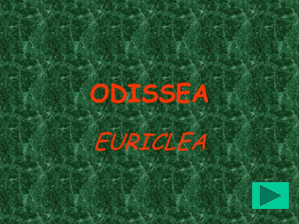 ODISSEA EURICLEA