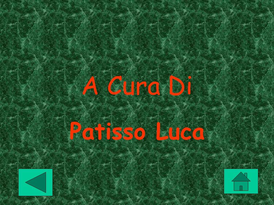 A Cura Di Patisso Luca