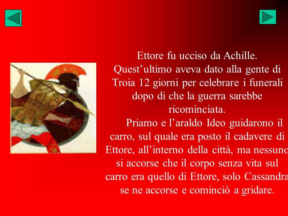 Ettore fu ucciso da Achille.