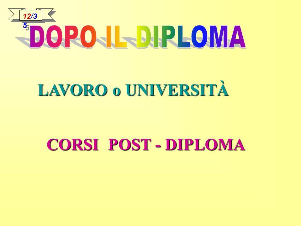 12/35 DOPO IL DIPLOMA LAVORO o UNIVERSITÀ CORSI POST - DIPLOMA