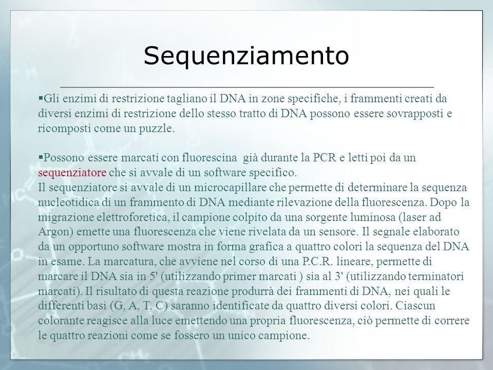 Sequenziamento