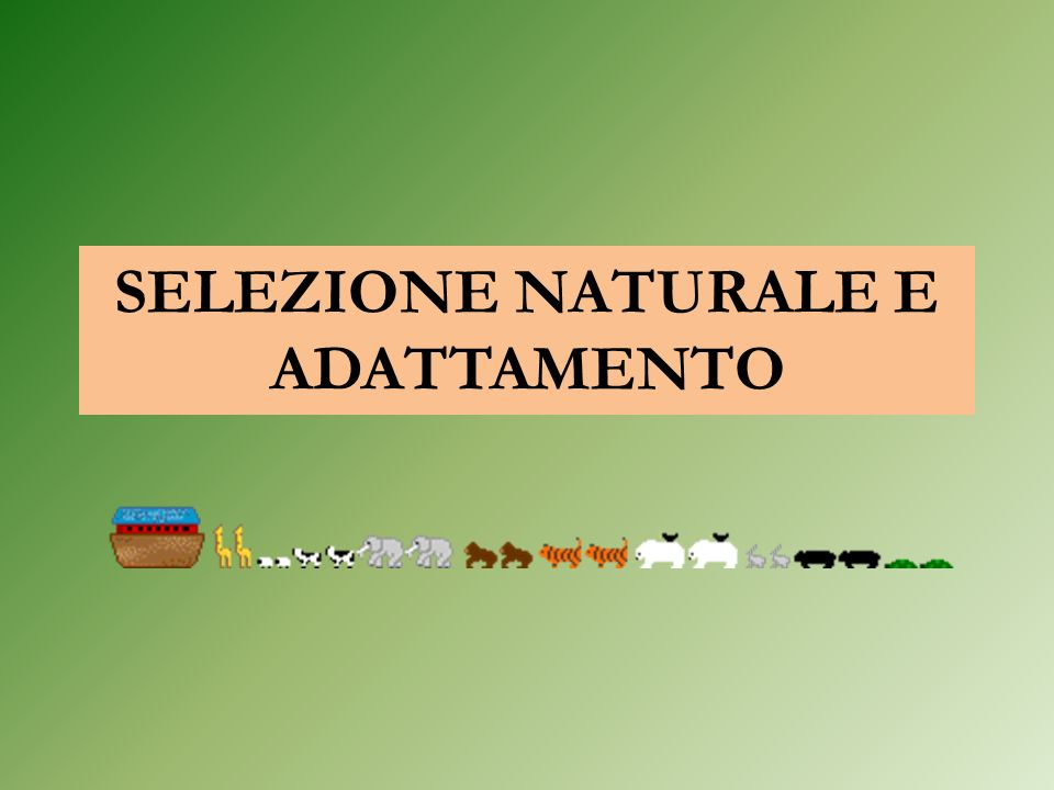 SELEZIONE NATURALE E ADATTAMENTO