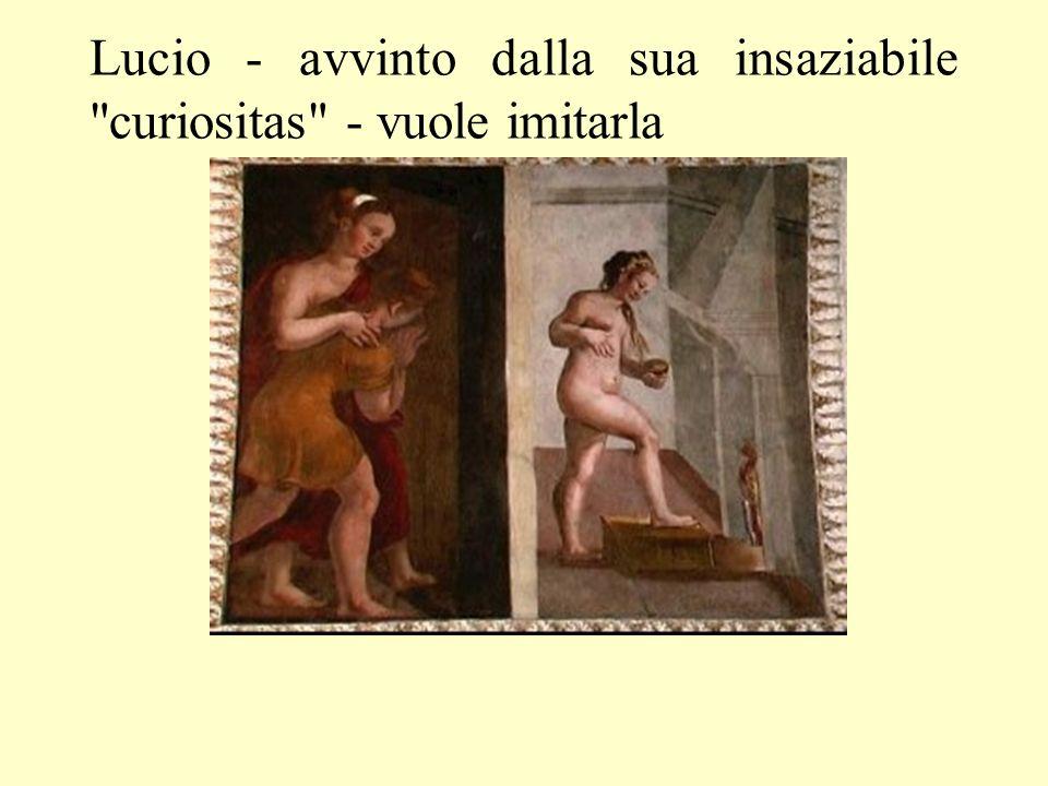 Lucio - avvinto dalla sua insaziabile curiositas - vuole imitarla