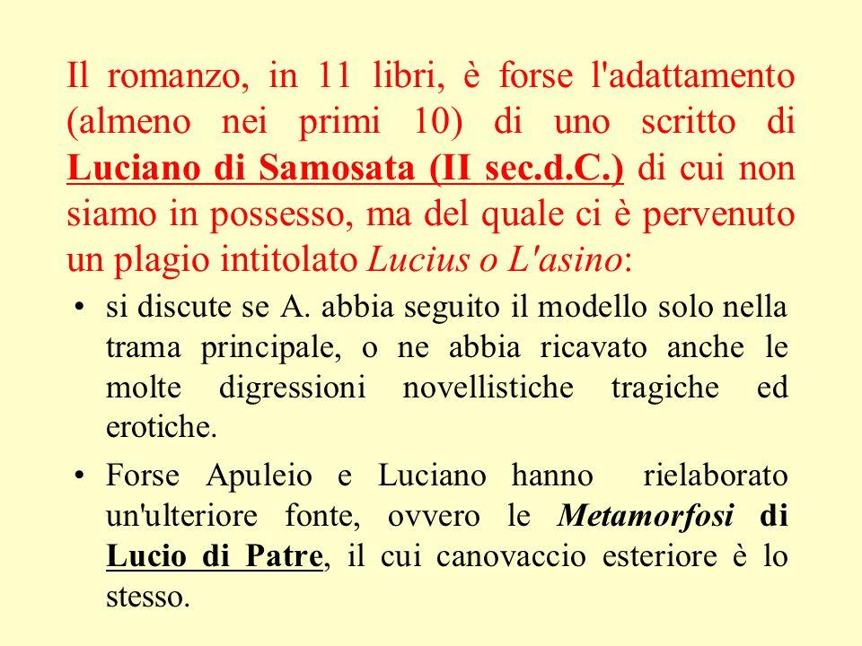 Il romanzo, in 11 libri, è forse l adattamento (almeno nei primi 10) di uno scritto di Luciano di Samosata (II sec.d.C.) di cui non siamo in possesso, ma del quale ci è pervenuto un plagio intitolato Lucius o L asino: