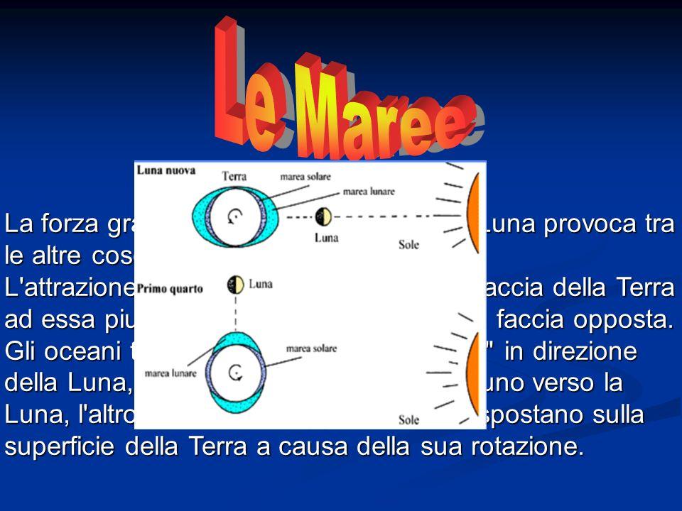 Le Maree La forza gravitazionale che lega Terra e Luna provoca tra le altre cose il fenomeno delle maree.