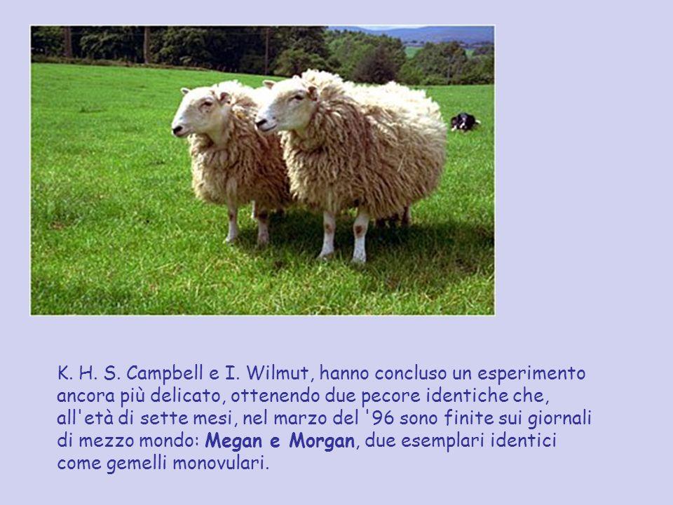 K. H. S. Campbell e I.