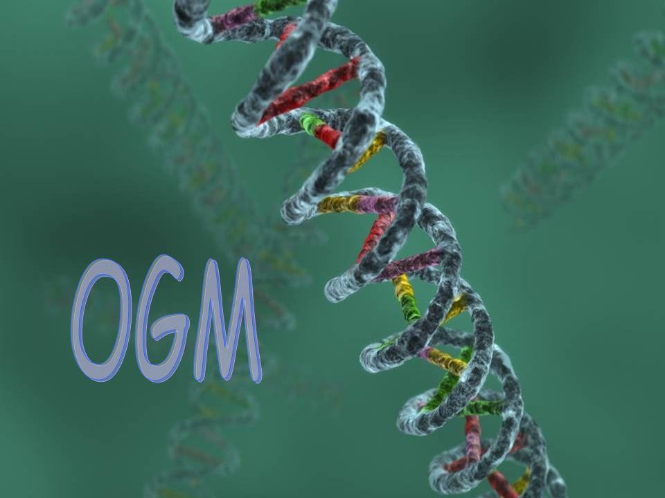 OGM OGM