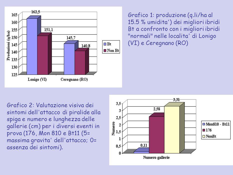 Grafico 1: produzione (q. li/ha al 15