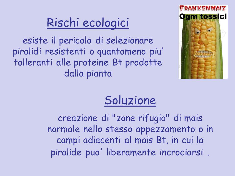 Rischi ecologici Soluzione