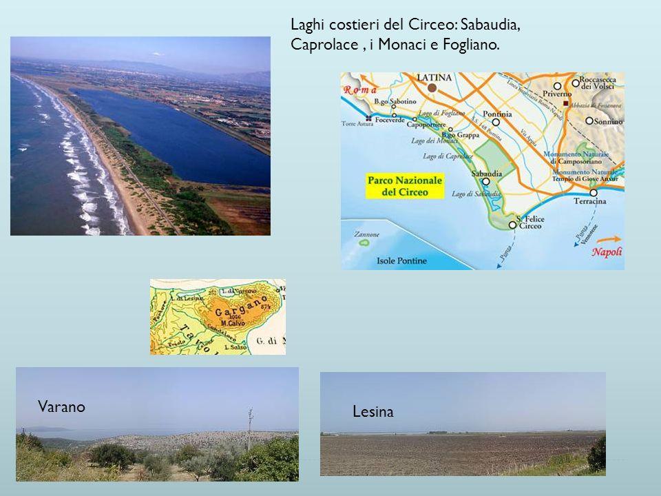 Laghi costieri del Circeo: Sabaudia, Caprolace , i Monaci e Fogliano.