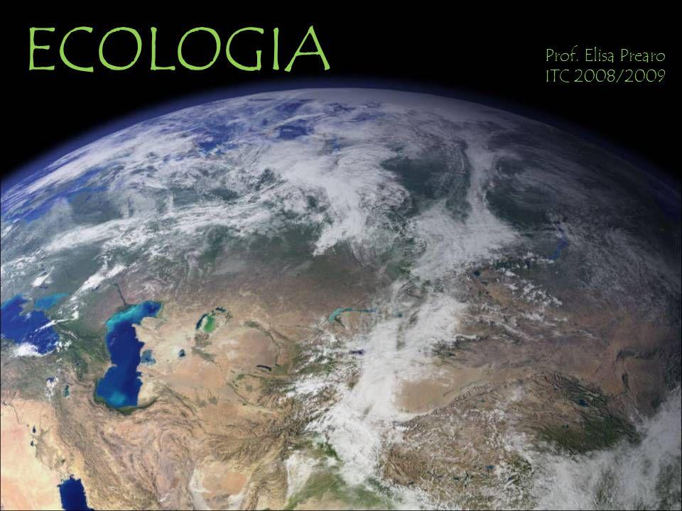 ECOLOGIA Prof. Elisa Prearo ITC 2008/2009