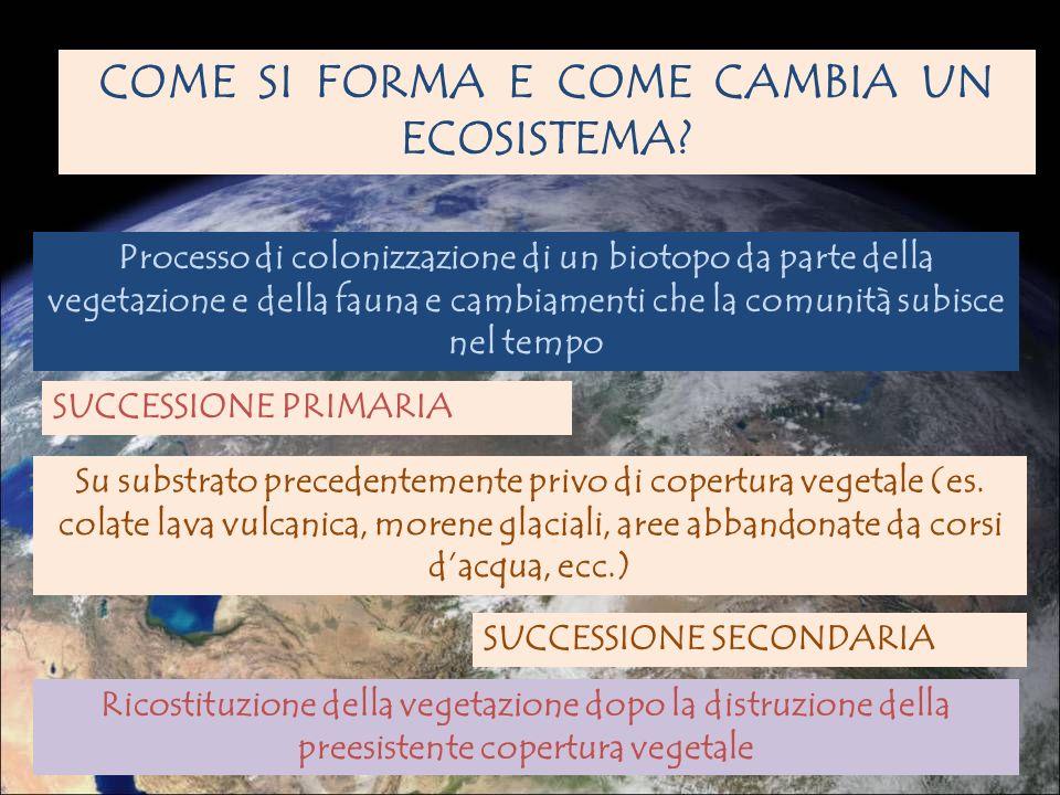 COME SI FORMA E COME CAMBIA UN ECOSISTEMA
