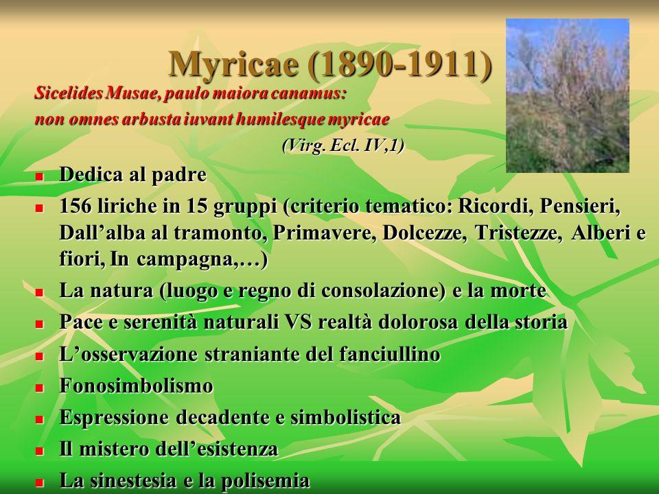 Myricae (1890-1911) Dedica al padre
