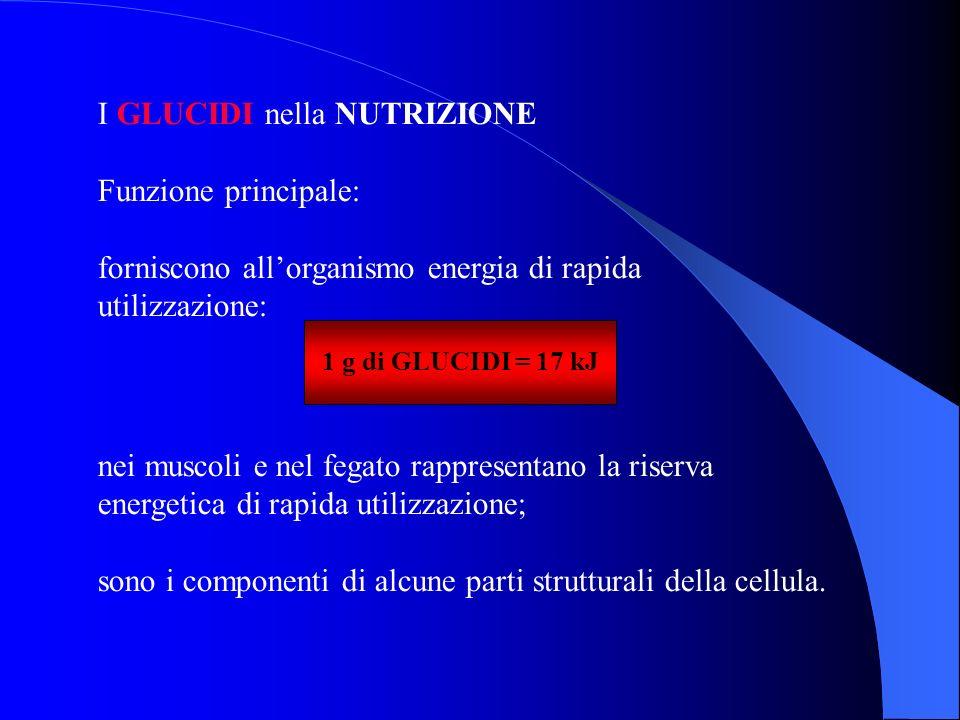 I GLUCIDI nella NUTRIZIONE Funzione principale: