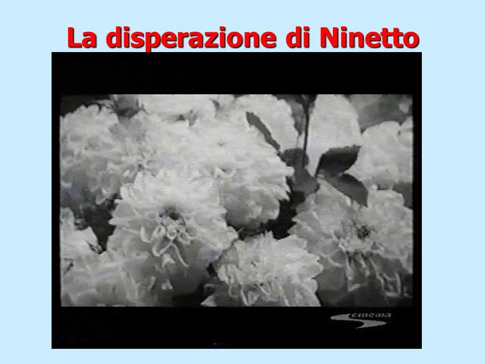 La disperazione di Ninetto