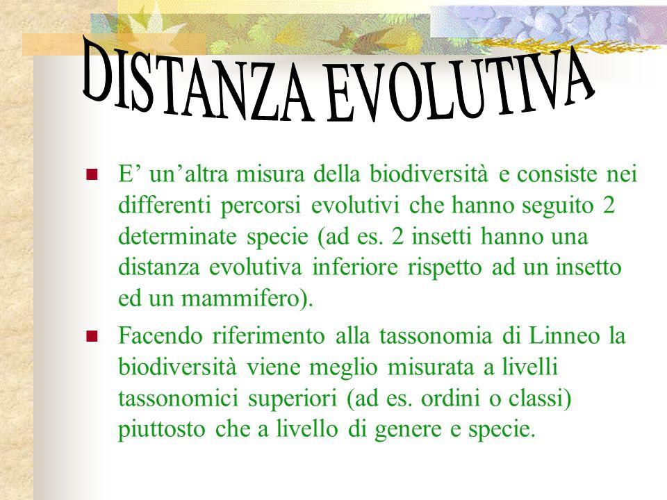 DISTANZA EVOLUTIVA