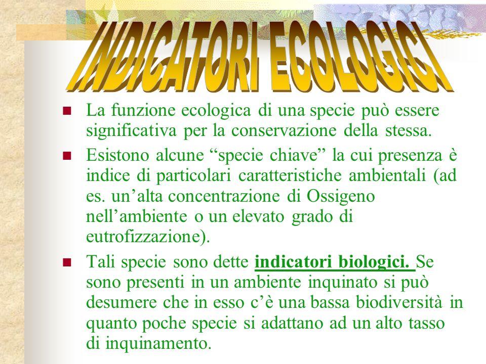 INDICATORI ECOLOGICI La funzione ecologica di una specie può essere significativa per la conservazione della stessa.