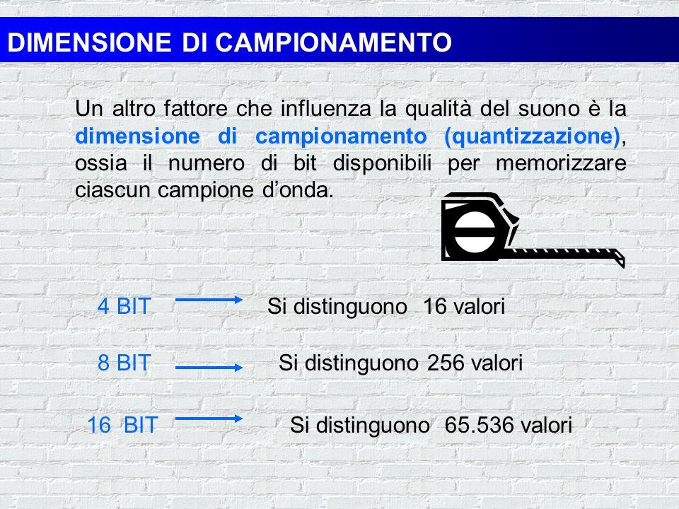 DIMENSIONE DI CAMPIONAMENTO