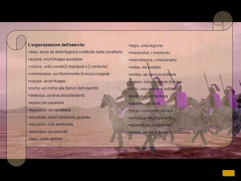 L'organizzazione dell'esercito: