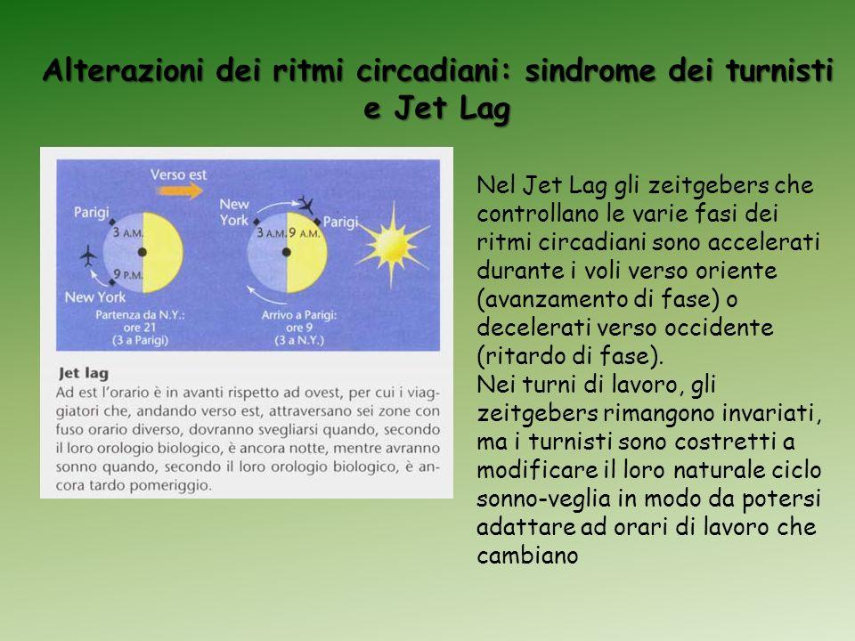 Alterazioni dei ritmi circadiani: sindrome dei turnisti e Jet Lag