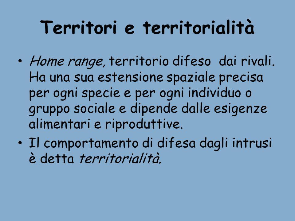 Territori e territorialità