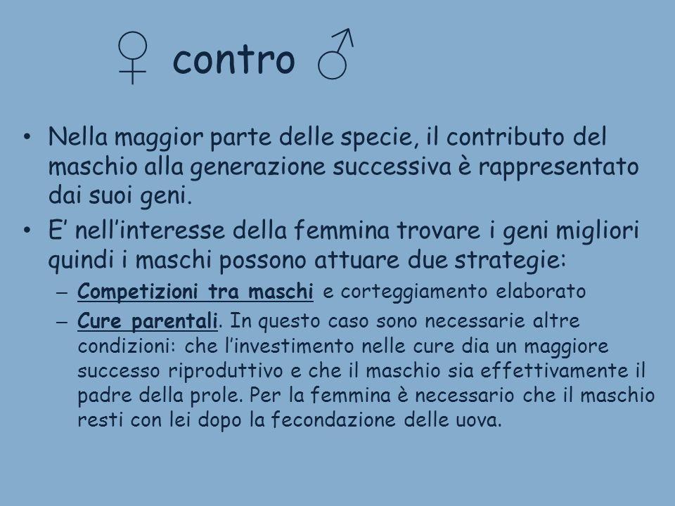 ♀ contro ♂Nella maggior parte delle specie, il contributo del maschio alla generazione successiva è rappresentato dai suoi geni.