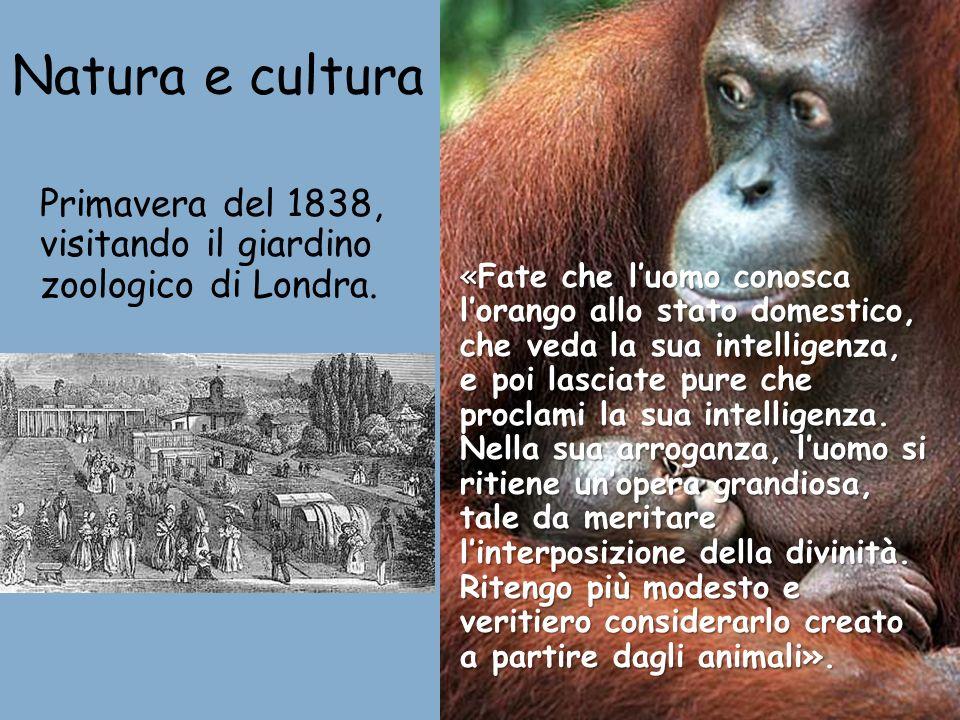 Natura e culturaPrimavera del 1838, visitando il giardino zoologico di Londra.