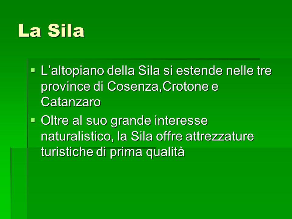 La Sila L'altopiano della Sila si estende nelle tre province di Cosenza,Crotone e Catanzaro.