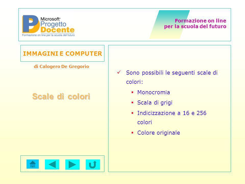 Scale di colori Sono possibili le seguenti scale di colori: Monocromia