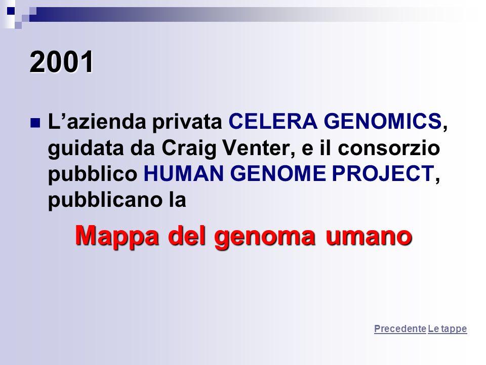 2001 L'azienda privata CELERA GENOMICS, guidata da Craig Venter, e il consorzio pubblico HUMAN GENOME PROJECT, pubblicano la.