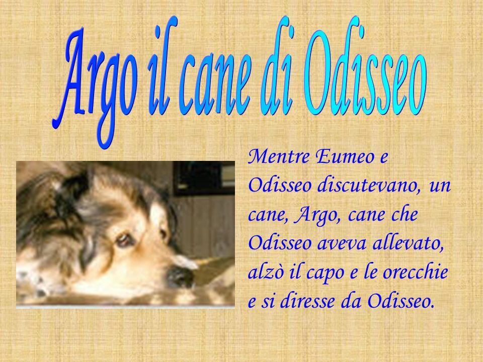 Argo il cane di Odisseo