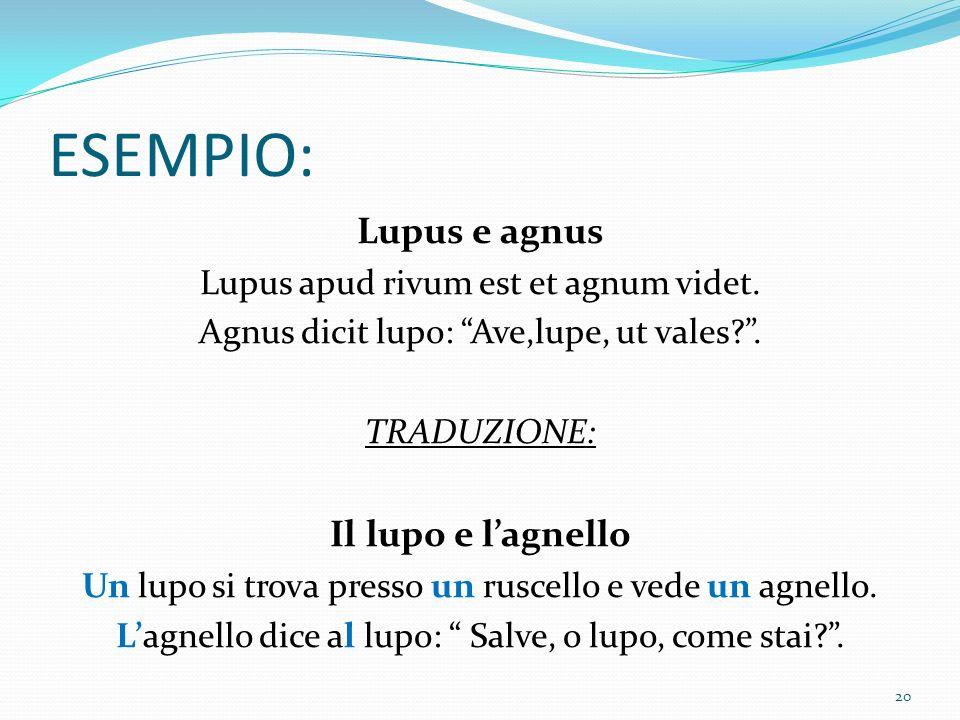 ESEMPIO: Lupus e agnus Il lupo e l'agnello