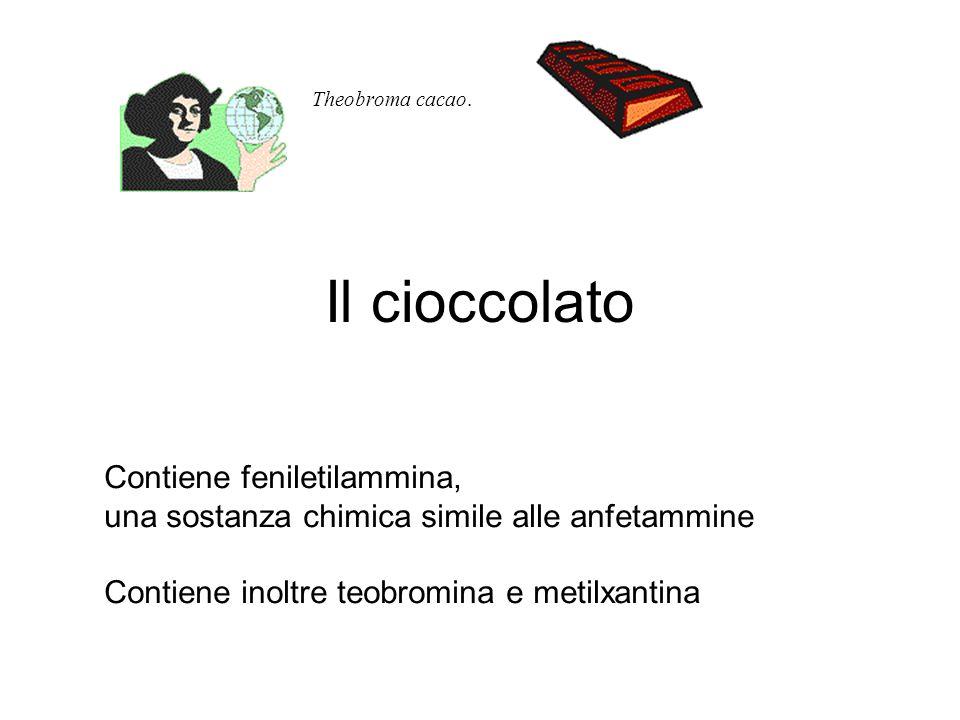 Il cioccolato Contiene feniletilammina,