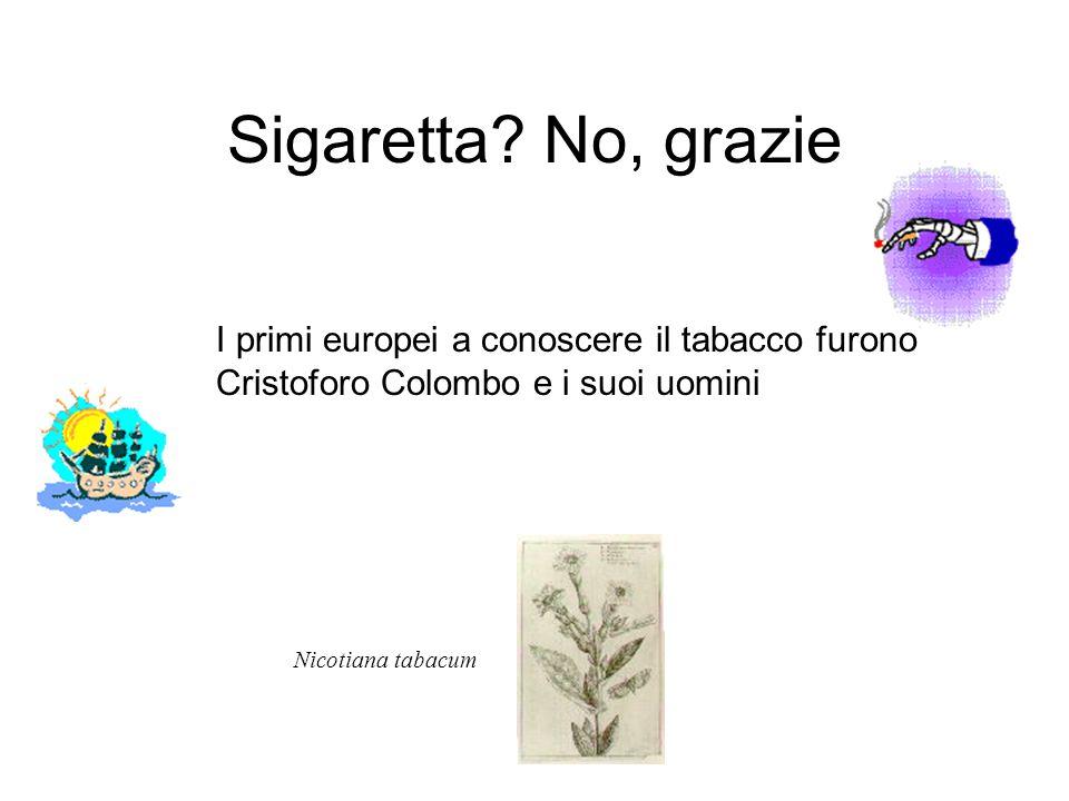 Sigaretta No, grazie I primi europei a conoscere il tabacco furono