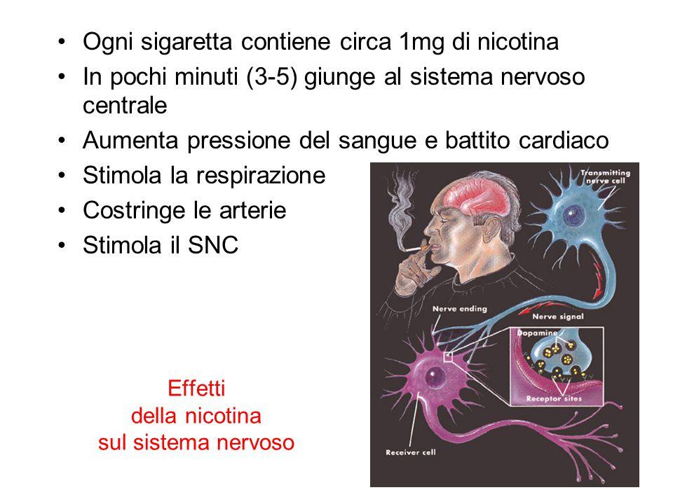 Effetti della nicotina sul sistema nervoso