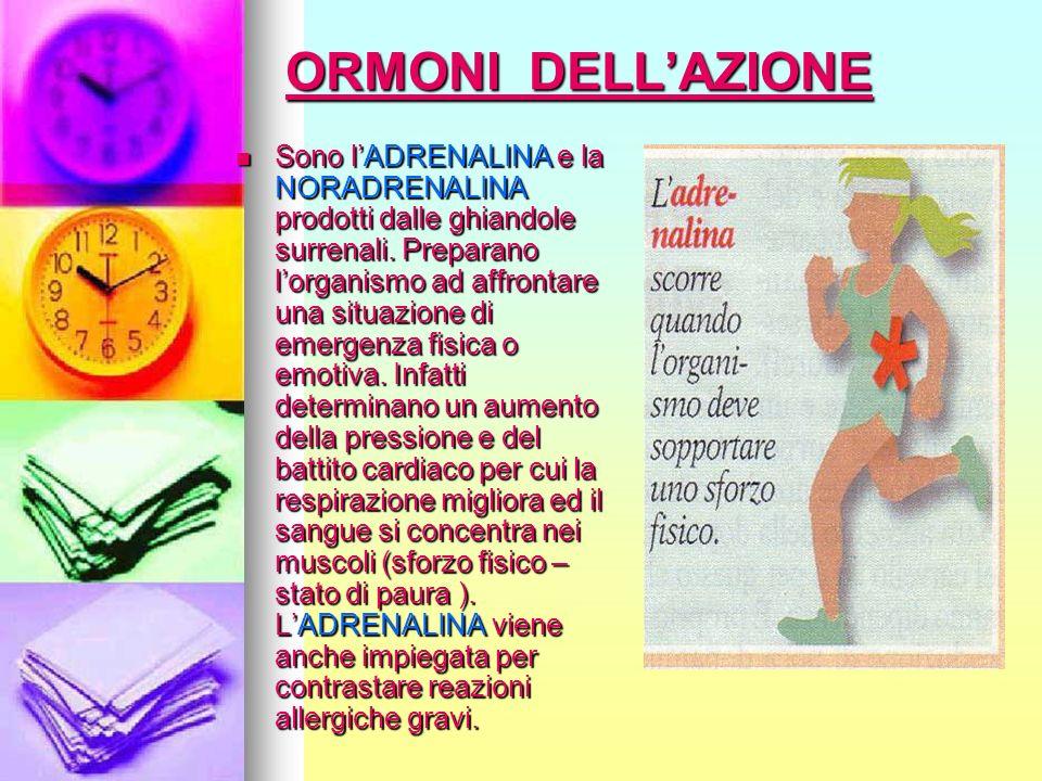 ORMONI DELL'AZIONE