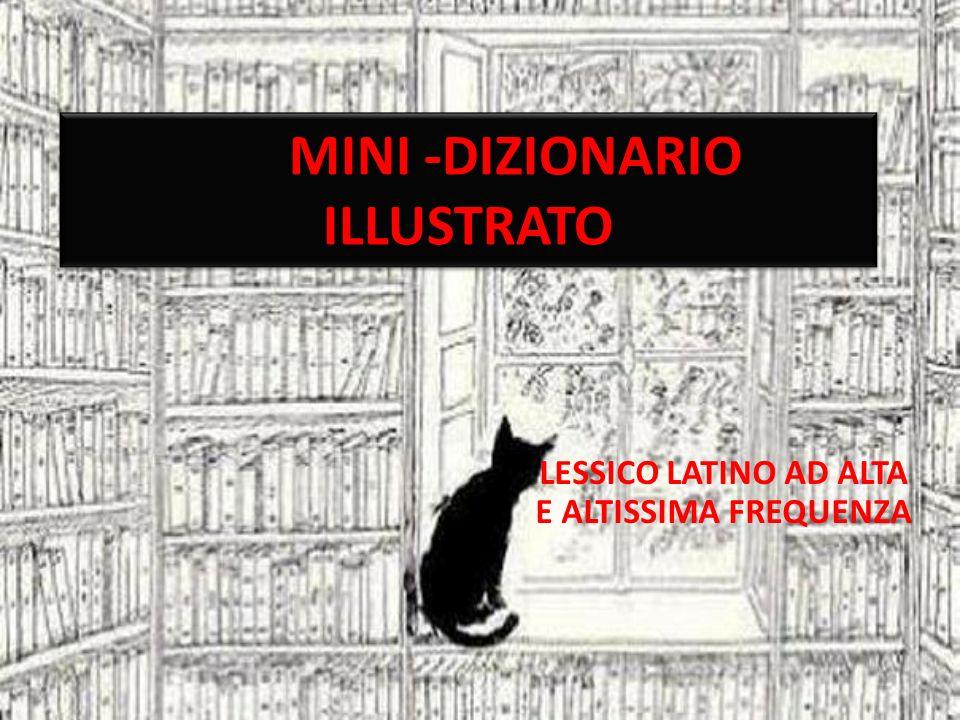 MINI -DIZIONARIO ILLUSTRATO