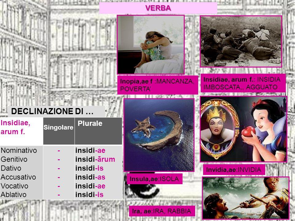 DECLINAZIONE DI … VERBA Insidiae, arum f. Plurale