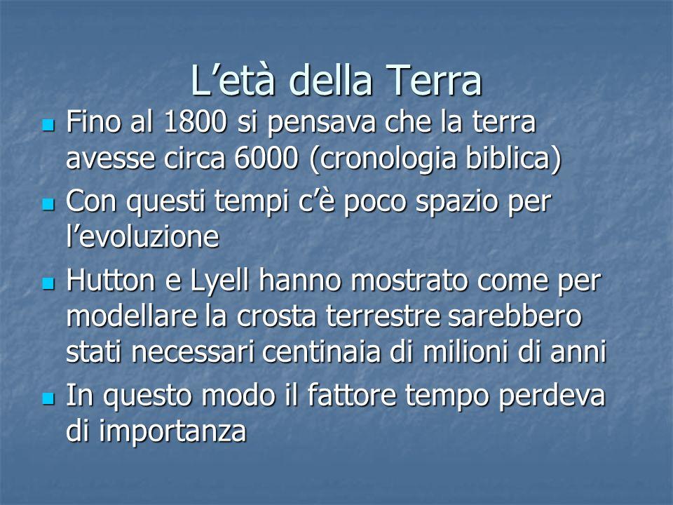 L'età della Terra Fino al 1800 si pensava che la terra avesse circa 6000 (cronologia biblica) Con questi tempi c'è poco spazio per l'evoluzione.