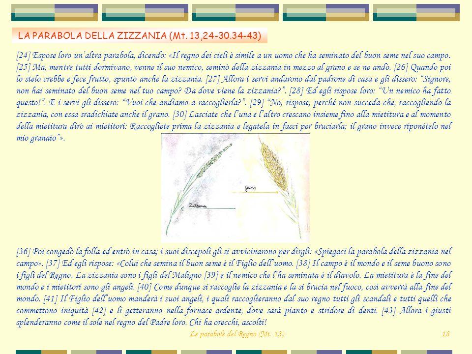 LA PARABOLA DELLA ZIZZANIA (Mt. 13,24-30.34-43)