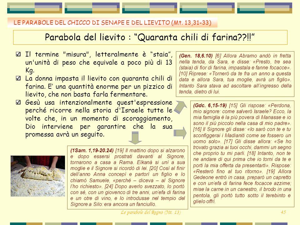 Parabola del lievito : Quaranta chili di farina !!