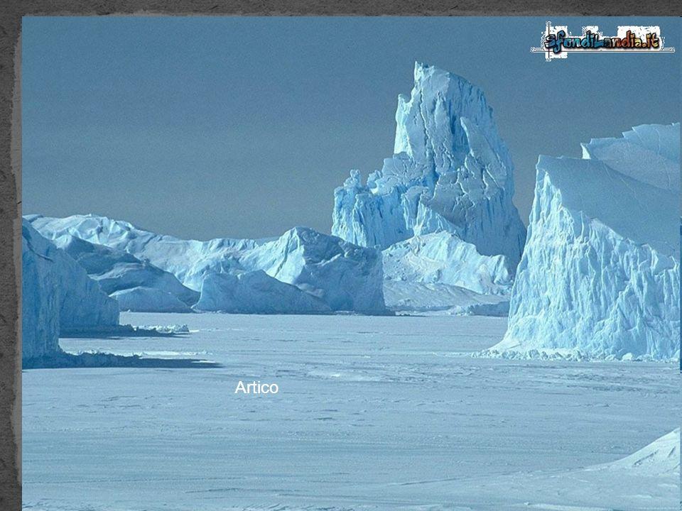 I ghiacciai