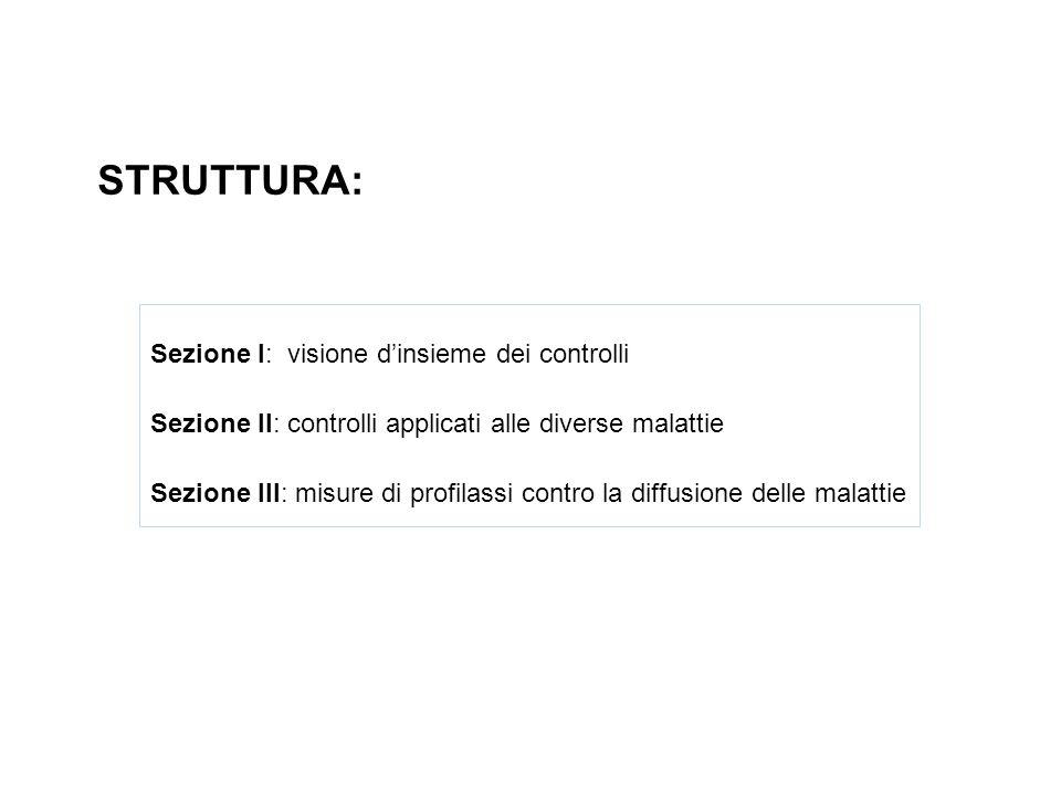 STRUTTURA: Sezione I: visione d'insieme dei controlli