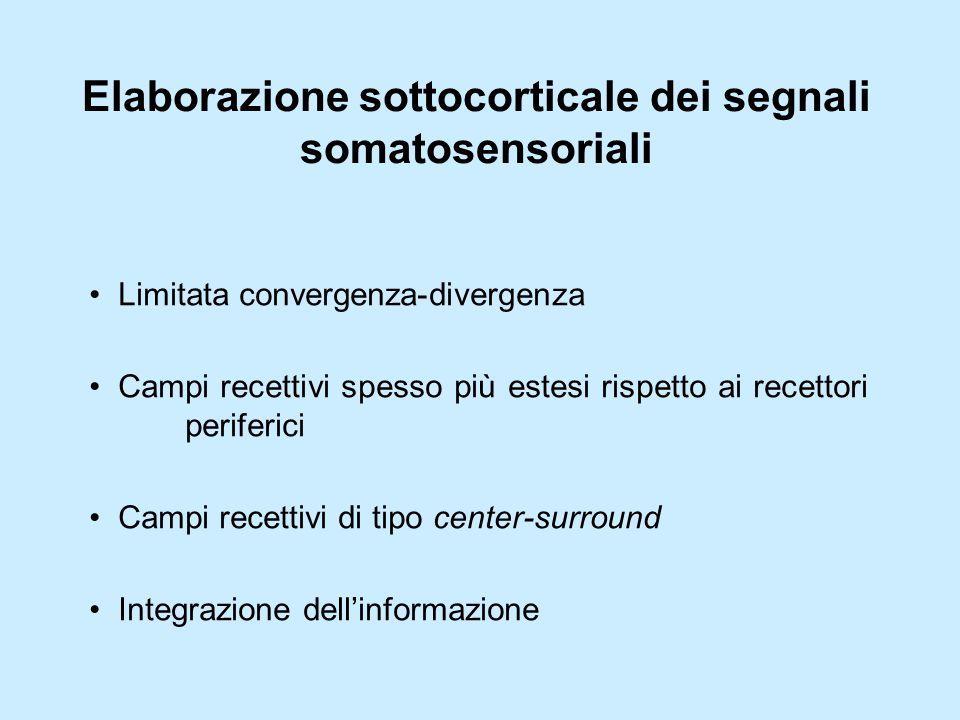 Elaborazione sottocorticale dei segnali somatosensoriali