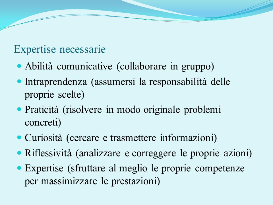 Expertise necessarie Abilità comunicative (collaborare in gruppo)