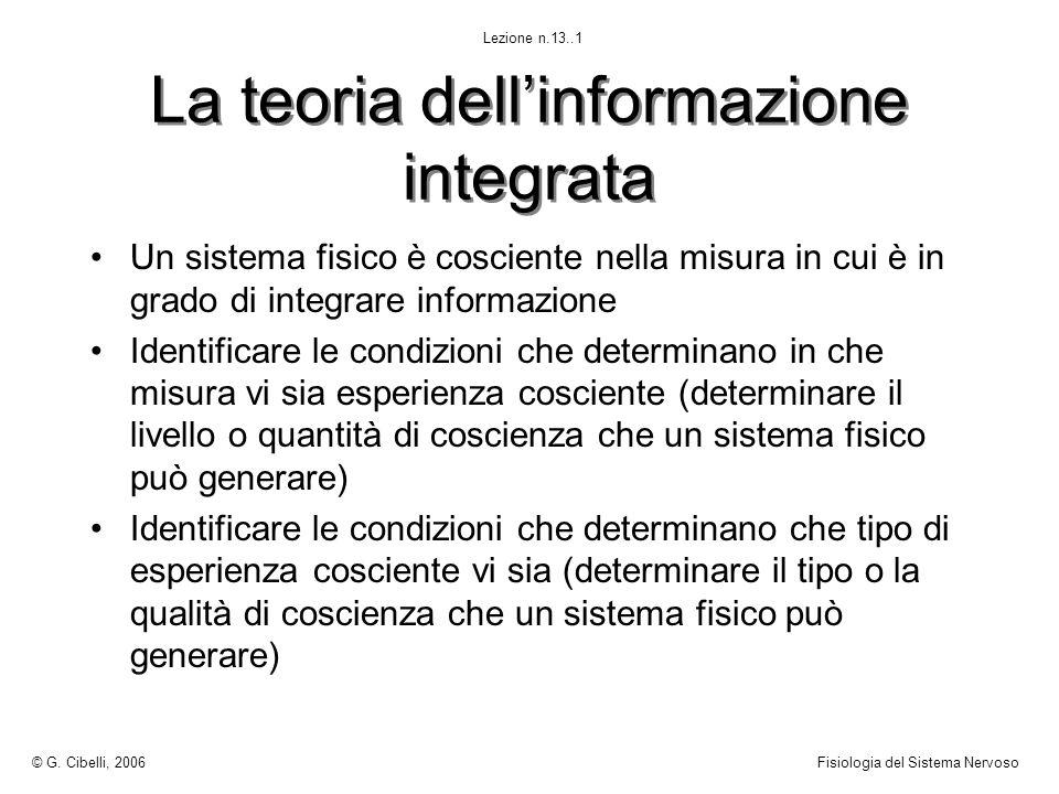 La teoria dell'informazione integrata