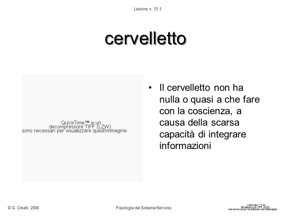 © G. Cibelli, 2006 Fisiologia del Sistema Nervoso. Lezione n. 13.1. cervelletto.