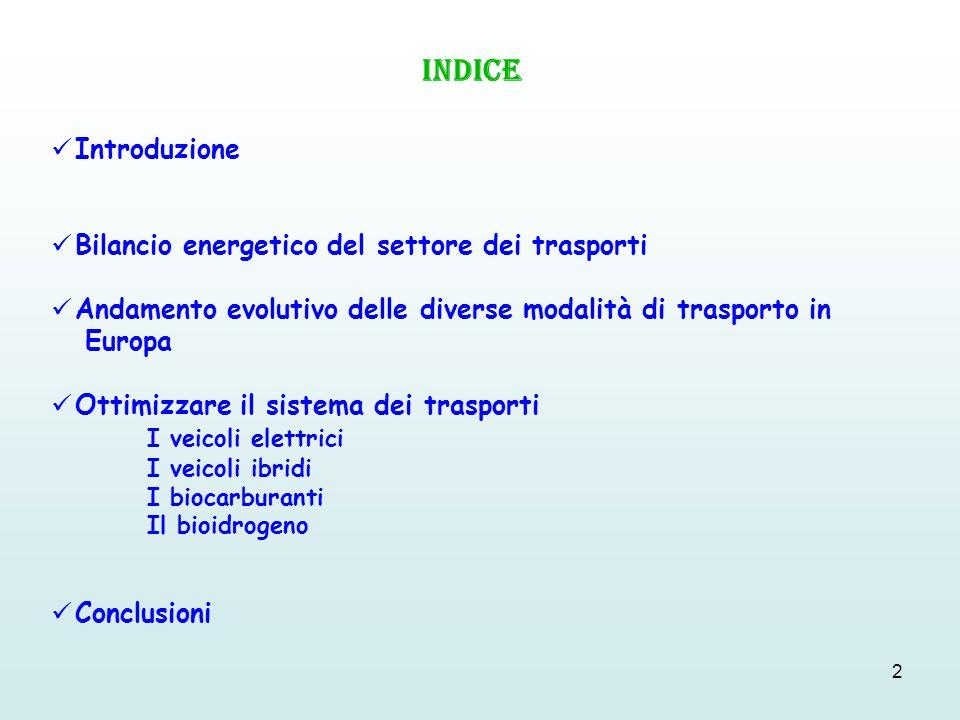 INDICE Introduzione Bilancio energetico del settore dei trasporti