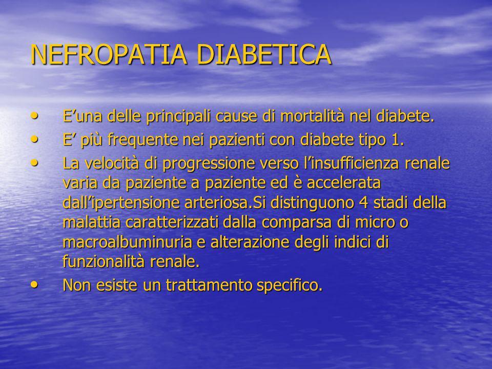 NEFROPATIA DIABETICA E'una delle principali cause di mortalità nel diabete. E' più frequente nei pazienti con diabete tipo 1.